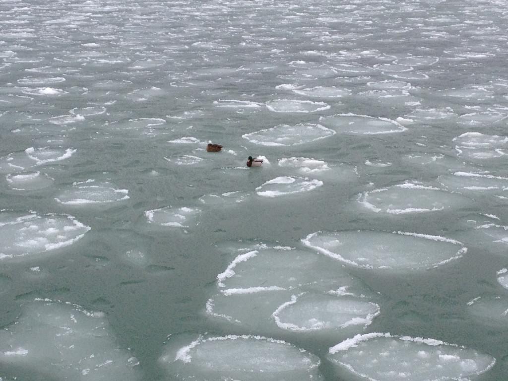 Eis-Ostsee4